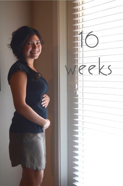 16 Weeks 2