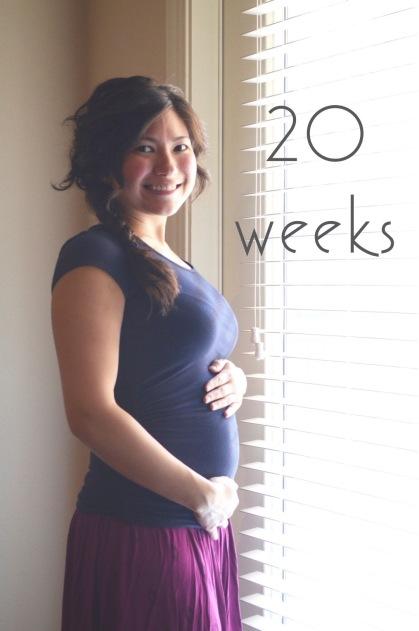 20 Weeks (1)